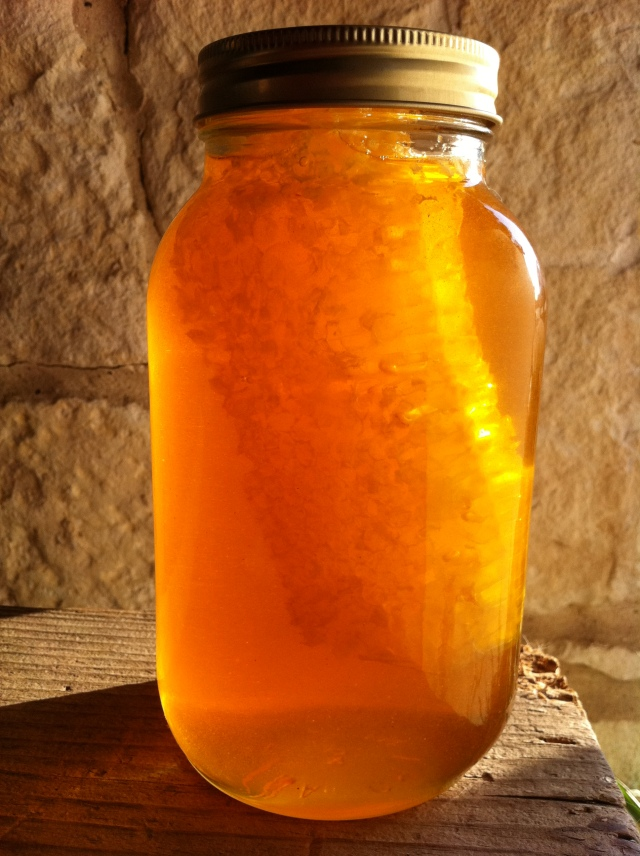 Orange Bee Honey