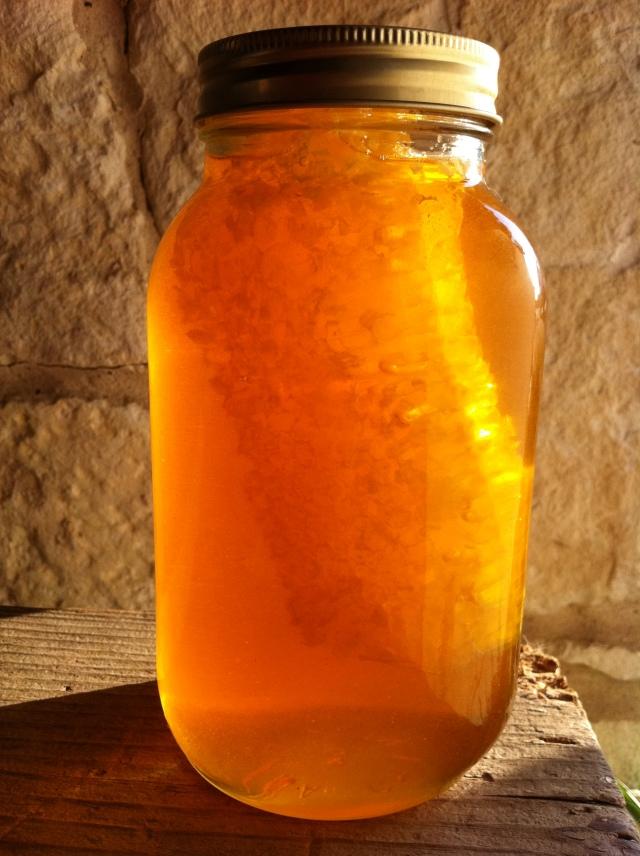 Orange Bee Honey