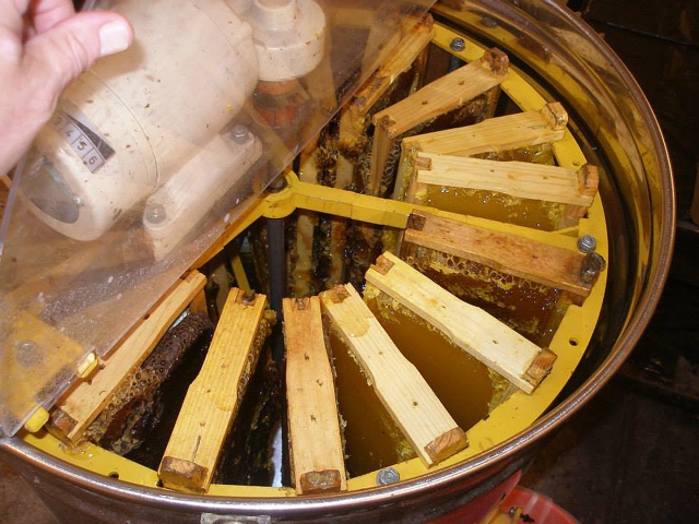 The extractor filled with supers full of honey ready to spin.