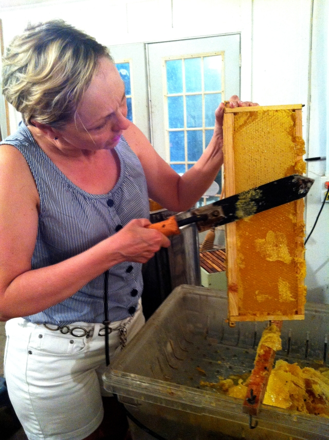 Rhonda takes her turn at cutting off the wax cappings.