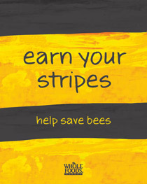 2-earn_your_stripes-sm